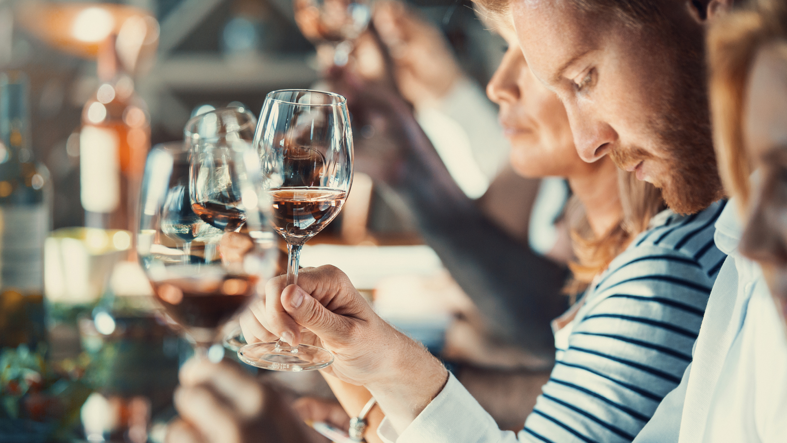 Wine Tasting Daily
